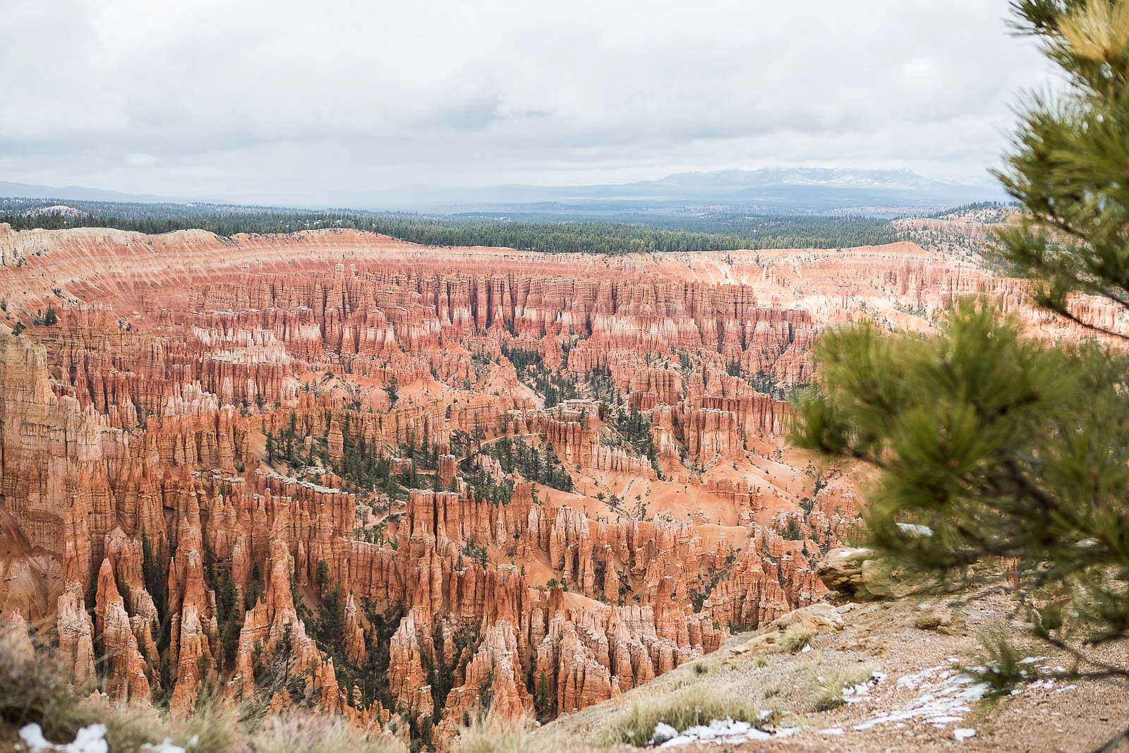 One Day in Bryce Canyon: Must See Viewpoints and What to Know Before You Go