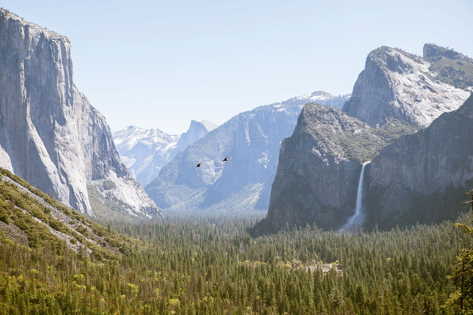 1 Day in Yosemite National Park: The Ultimate Itinerary and All You Need to Know to Plan Your Visit