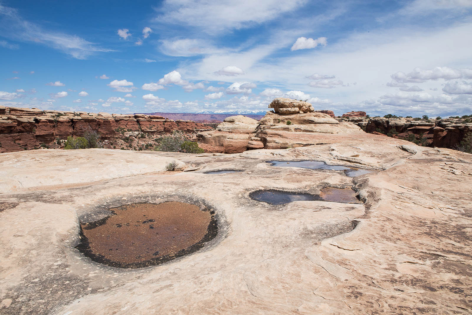 Roadtrip Guide to Canyonlands NP and Arches NP: two Utah parks in one day