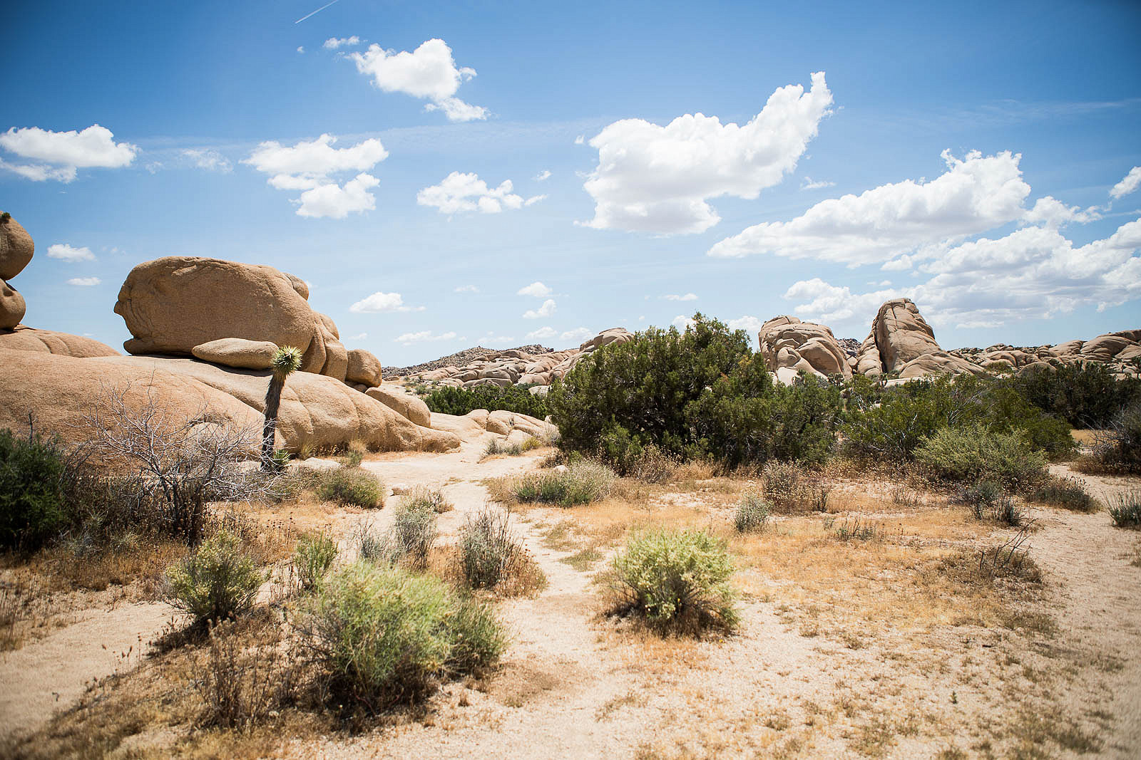 6 Places to See in Joshua Tree & How We Ran Out of Gas in the Desert
