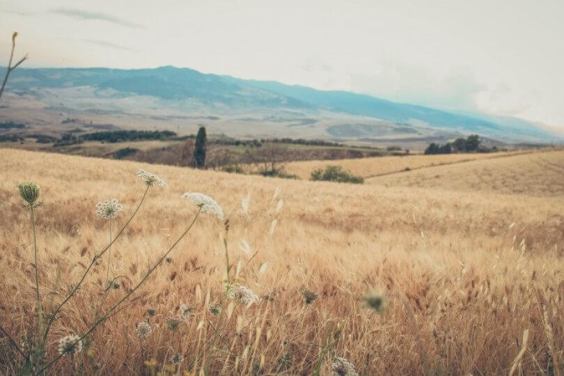 Italy, roadtrip day 4