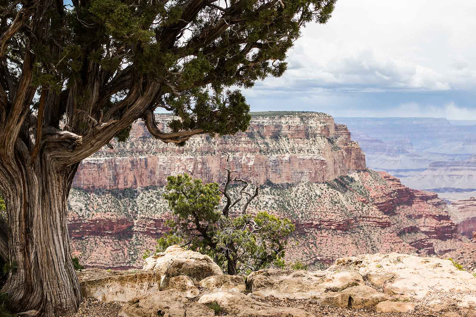 grand canyon_blog_024