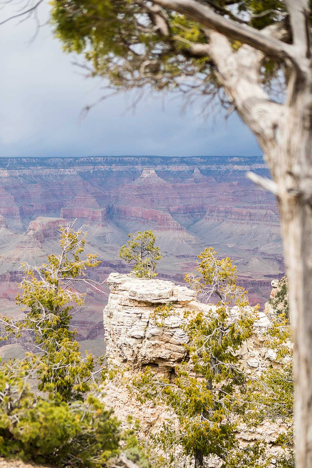grand canyon_blog_033
