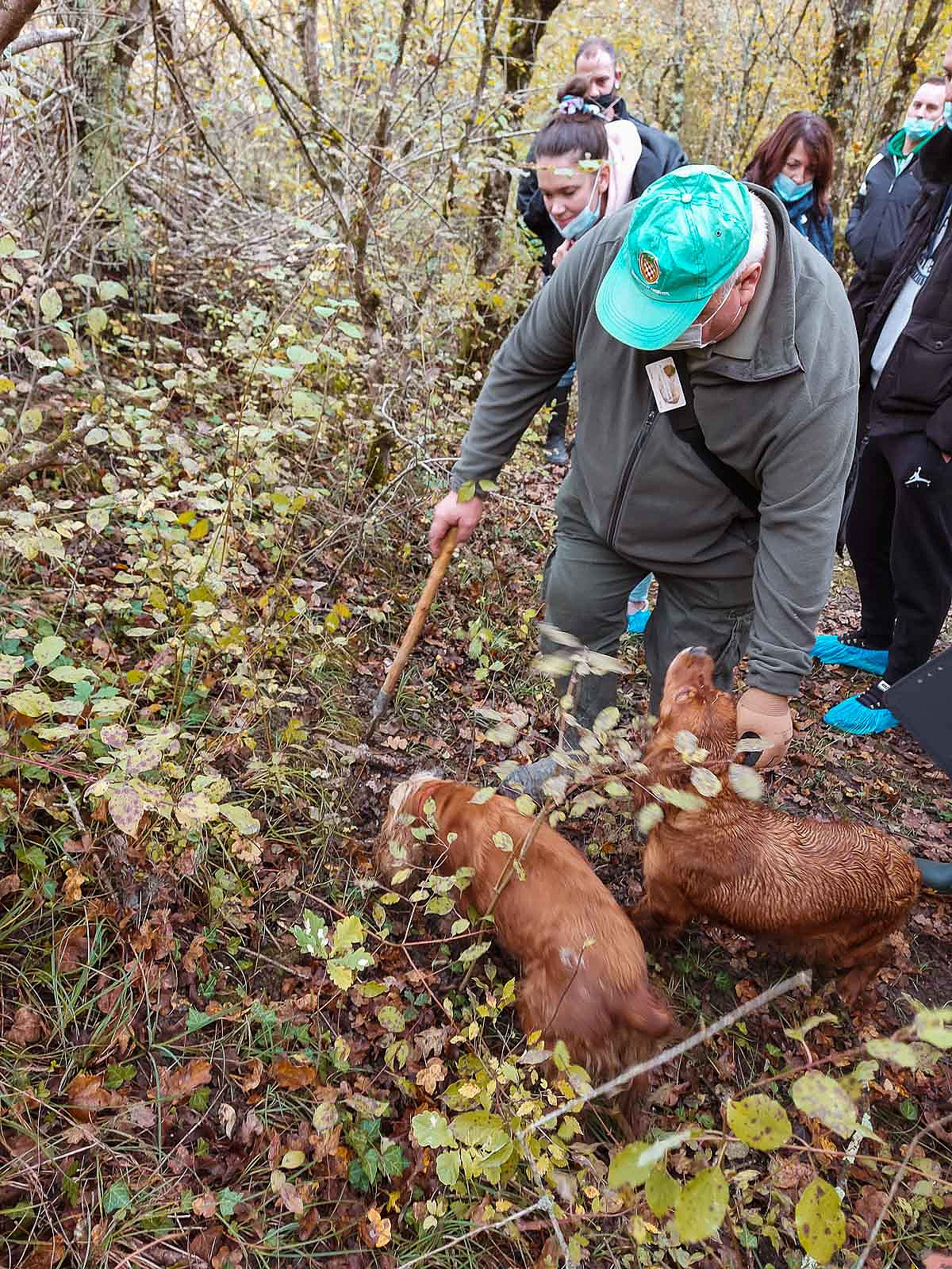 truffle_hunting_blog_46