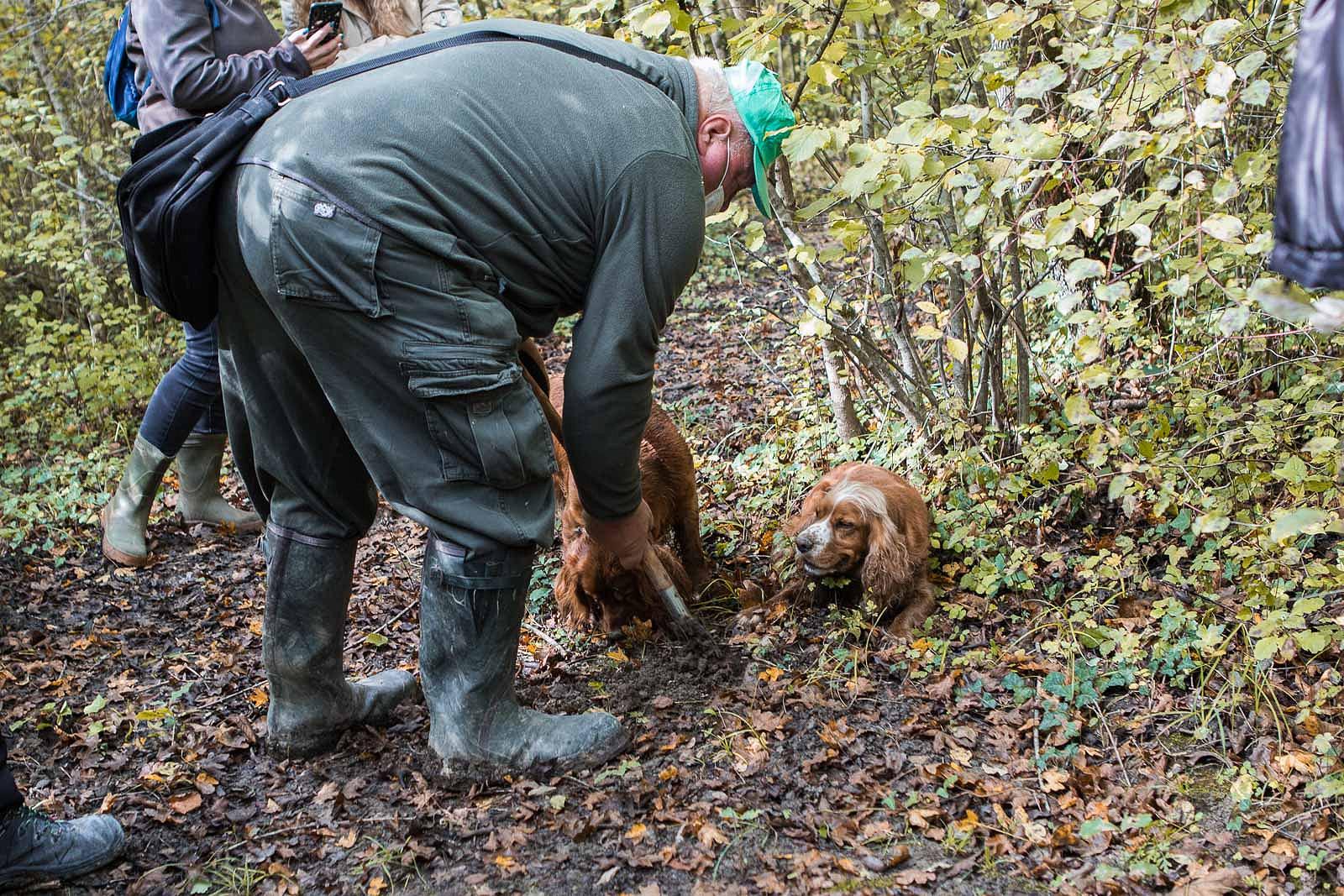 truffle_hunting_blog_33