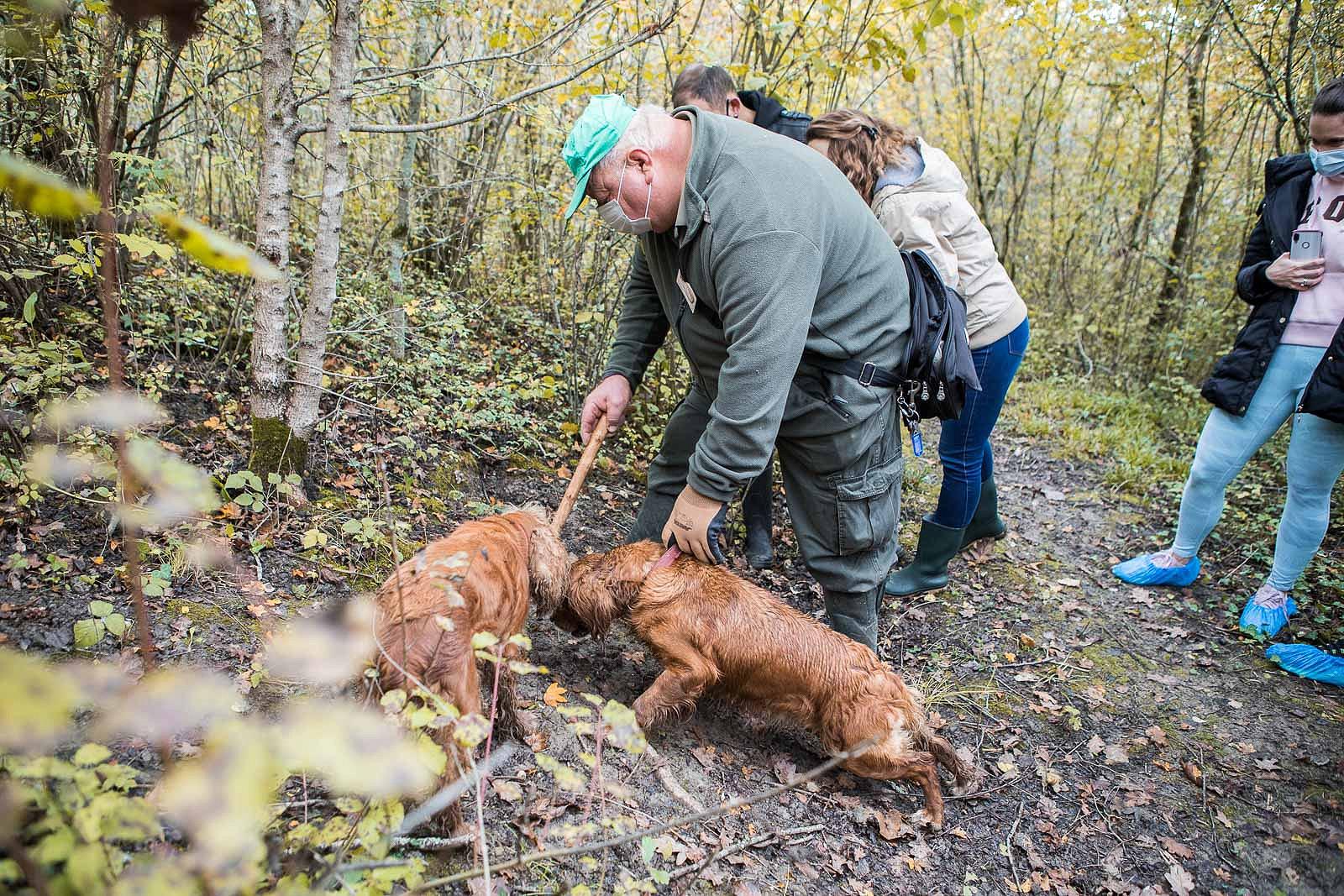 truffle_hunting_blog_30