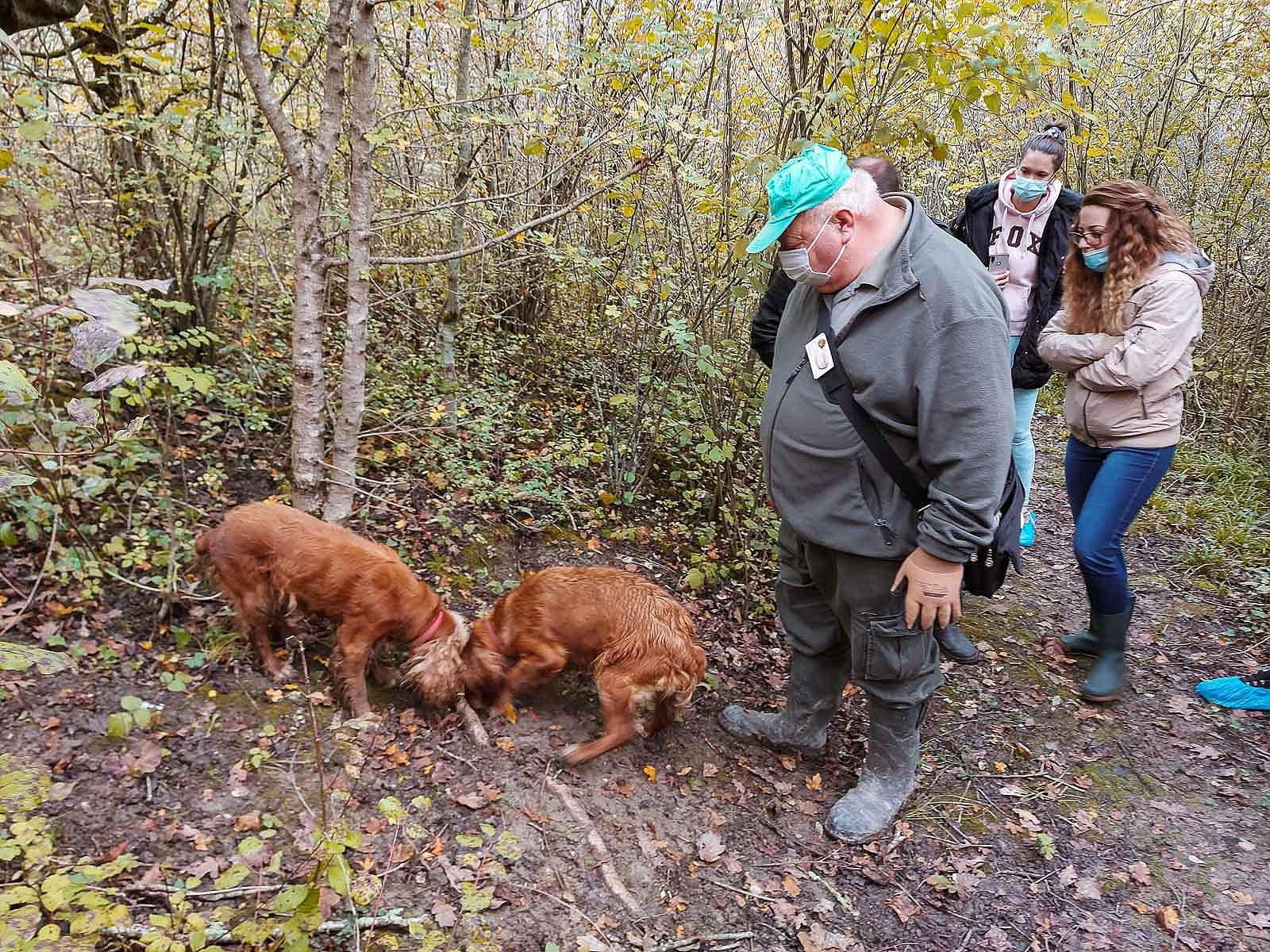 truffle_hunting_blog_35