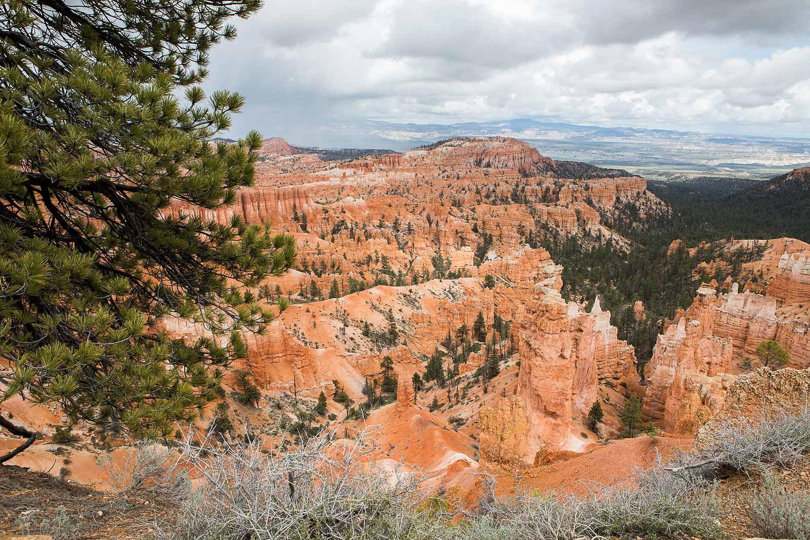 bryce canyon_blog_036