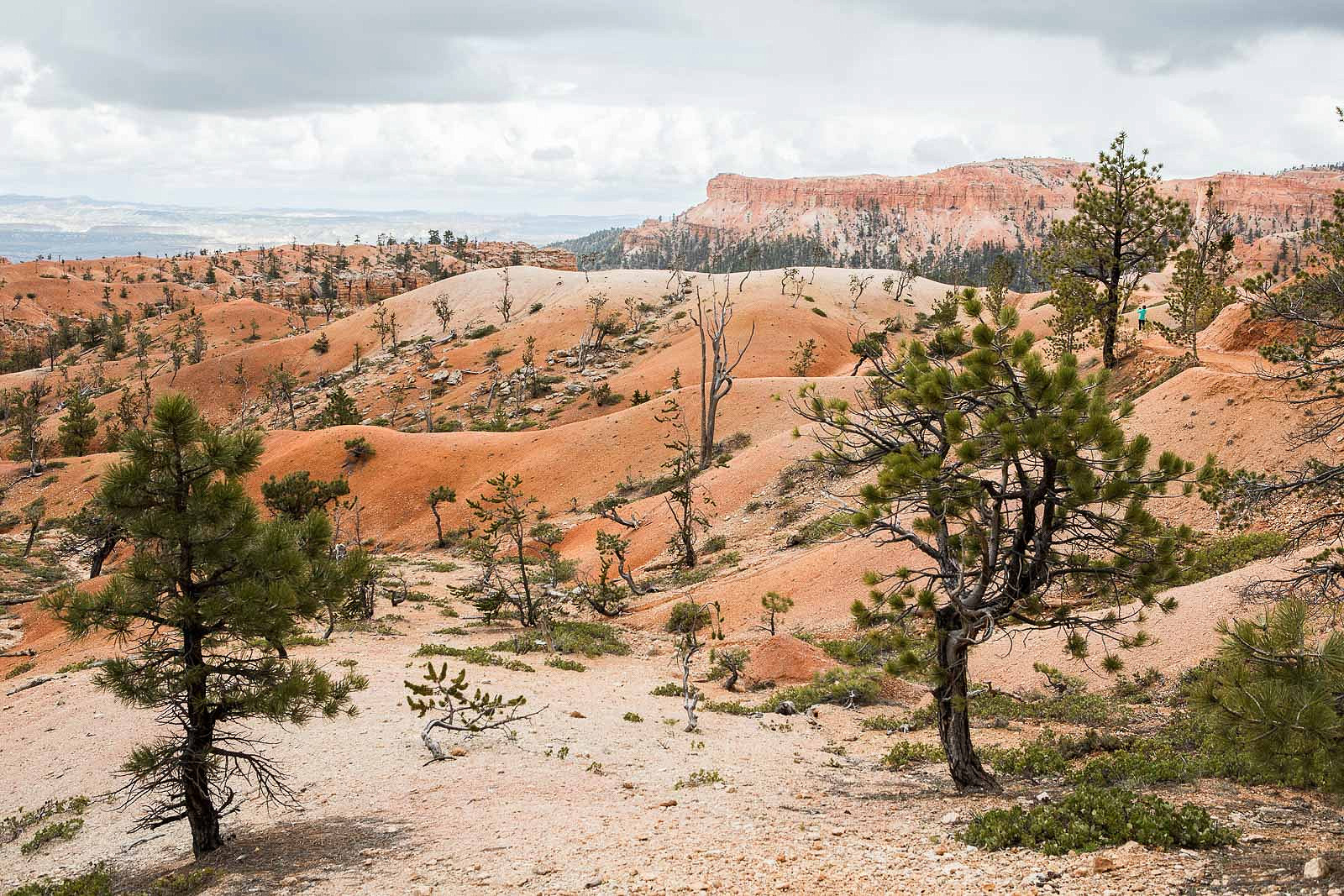 bryce canyon_blog_040